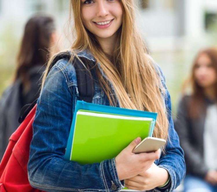 Indicadores da educação básica e do ensino secundário: Perceções sobre o seu uso e utilidade social